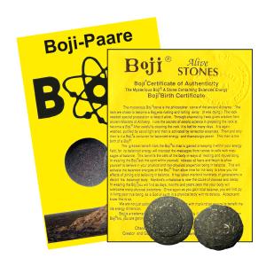 Boji® Paar Lebende Steine mit Booklet & Zertifikat ca. 23-25mm