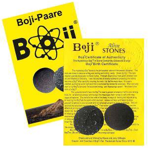 Boji® Paar Lebende Steine mit Booklet & Zertifikat ca. 28-30mm